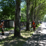 Покос травы на обочинах автодорог г. Донецка